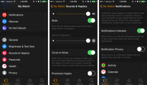 apple-watch-battery-life-tips-tricks-how-save-battery-reduce-drain-iphone-problems